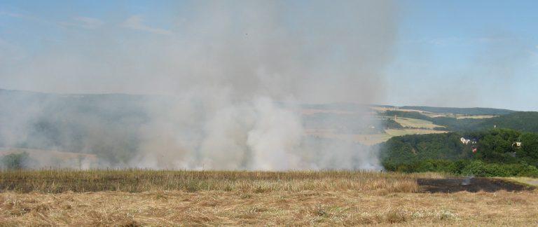 Flächenbrand Kalkofen