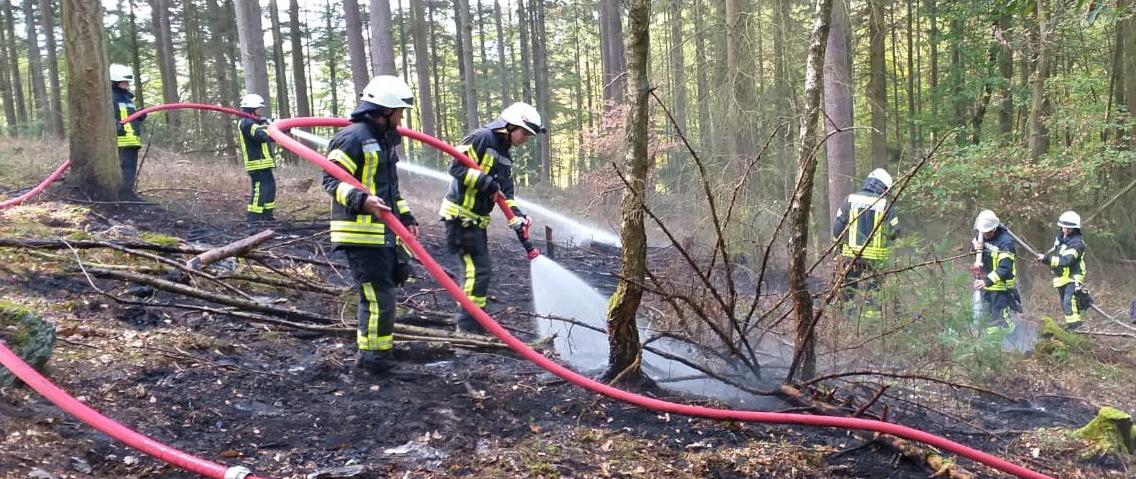 Vegetationsbrand im Wald bei Holzfeld