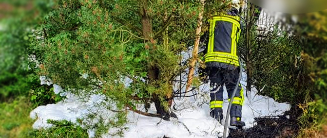 Heckenbrand in Holzfeld (Alarmstufe B1)